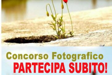 Concorso Fotografico Fior di Città 2015 – Scadenza 05 Aprile 2015
