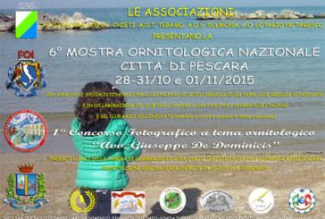 """I° Concorso fotografico a tema ornitologia """"Avv. Giuseppe De Dominicis"""" – Scadenza 30 Settembre 2015"""