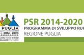 'Fotogrammi della Puglia rurale' – Scadenza 30 Novembre 2017