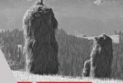 Uomini, boschi e api: la montagna ed il lavoro dell'uomo – Scadenza 30 Settembre 2018