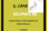 """Concorso Fotografico """"Il cane secondo me"""" – Scadenza 30 Settembre 2018"""