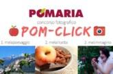 Concorso fotografico POM-CLICK – Scadenza 31 Agosto 2018