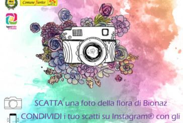 Concorso Fotografico #bionazfiorita – Scadenza 15 Settembre 2018